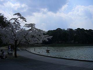 jin-guu1.jpg
